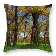 Appleton Farm Throw Pillow