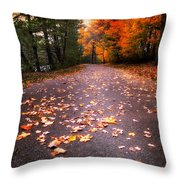 Approaching Autumn Throw Pillow