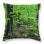 Approaching Sullivan Throw Pillow