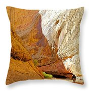 Approaching The Shadow In Grand Wash In Capitol Reef National Park-utah Throw Pillow