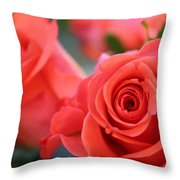 Apricot Beauty Throw Pillow