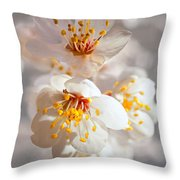 Apricot Blooms Throw Pillow