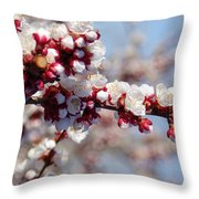 Apricot Blossoms Popping Throw Pillow