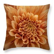 Apricot Dahlia Throw Pillow