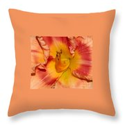 Apricot Daylily Close-up Throw Pillow