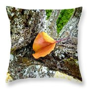 Apricot Leaf And Lichen Throw Pillow
