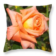 Apricot Nectar Rose Throw Pillow