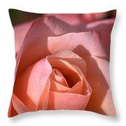 Apricot Rose Throw Pillow