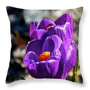April Crocus' Throw Pillow