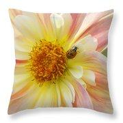April Heather Dahlia With Ladybug Throw Pillow