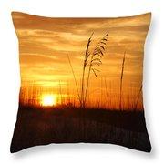 April Morning Grasses Throw Pillow