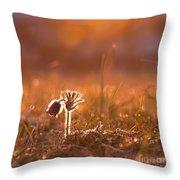 April Morning Throw Pillow