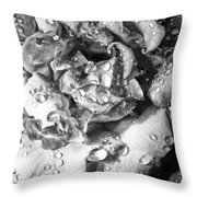 April Rose Bw Palm Springs Throw Pillow