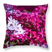 April Showers Mean May Flowers Throw Pillow