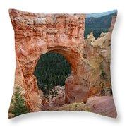 Aqua Canyon I Throw Pillow
