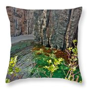 Aquamarine Water In Trinity Bay Near Skerwink Trail-nl Throw Pillow