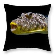 Aquarium Fish Throw Pillow