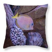 Aquarium Impression Throw Pillow
