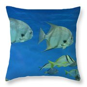 Aquatic Blues Throw Pillow