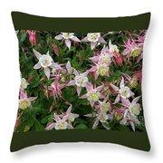 Aquilegia Mckana Hybrids Throw Pillow