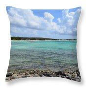Araba Coastal Views Throw Pillow