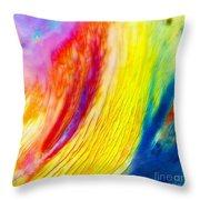 Arabian Desert Rainbow Throw Pillow