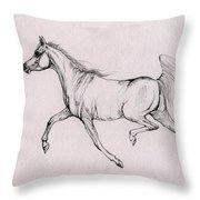 Arabian Horse  2014 02 25b Throw Pillow