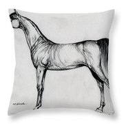 Arabian Horse Drawing 34 Throw Pillow