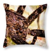Arachnophobia Throw Pillow
