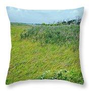 Aransas Nwr Coastal Grasses Throw Pillow