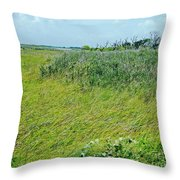 Aransas Nwr Coastal Grasses Throw Pillow