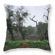 Aransas Nwr Landscape Throw Pillow