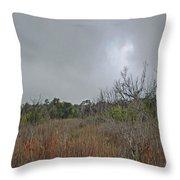Aransas Nwr Texas Coastland Throw Pillow
