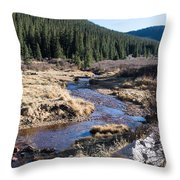 Arapaho National Forest Throw Pillow