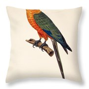 Aratinga Chrysocephalus  Throw Pillow
