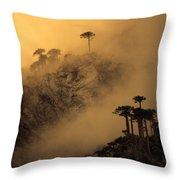 Araucaria Dawn Chile Throw Pillow