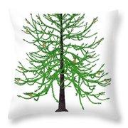 Araucaria Prehistoric Tree Throw Pillow