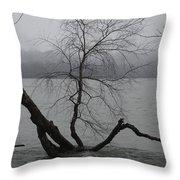 Arbor Island Throw Pillow