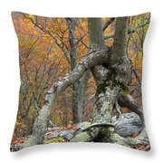 Arboreal Architecture Throw Pillow