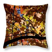Arboretum Fall Throw Pillow