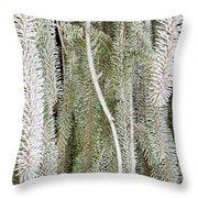 Arboretum Hoar Frost 2 Throw Pillow