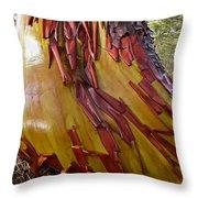 Arbutus Tree Trunk Throw Pillow