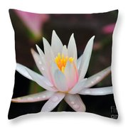Arc-en-ciel Water Lily Throw Pillow