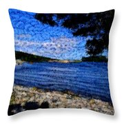 Arcadia Maine Abstract Throw Pillow