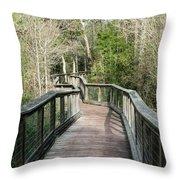 Arcadia Mill 8 Throw Pillow