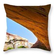 Arch 42 Throw Pillow