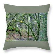 Arch  Bridge Through Trees Throw Pillow