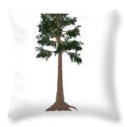 Archaeopteris Prehistoric Tree Throw Pillow