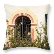 Arched And Gated Throw Pillow