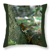 Arched Chipmunk Throw Pillow